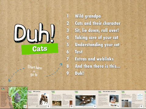 Duh Cats, what's it all about?