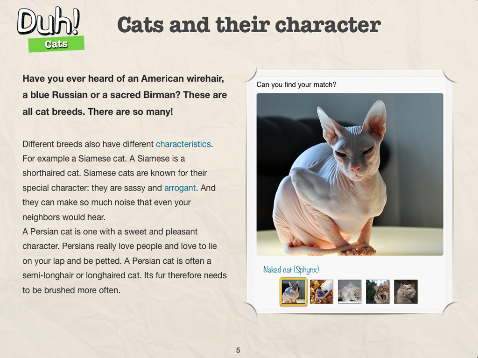 Duh Cats, check out different breeds.